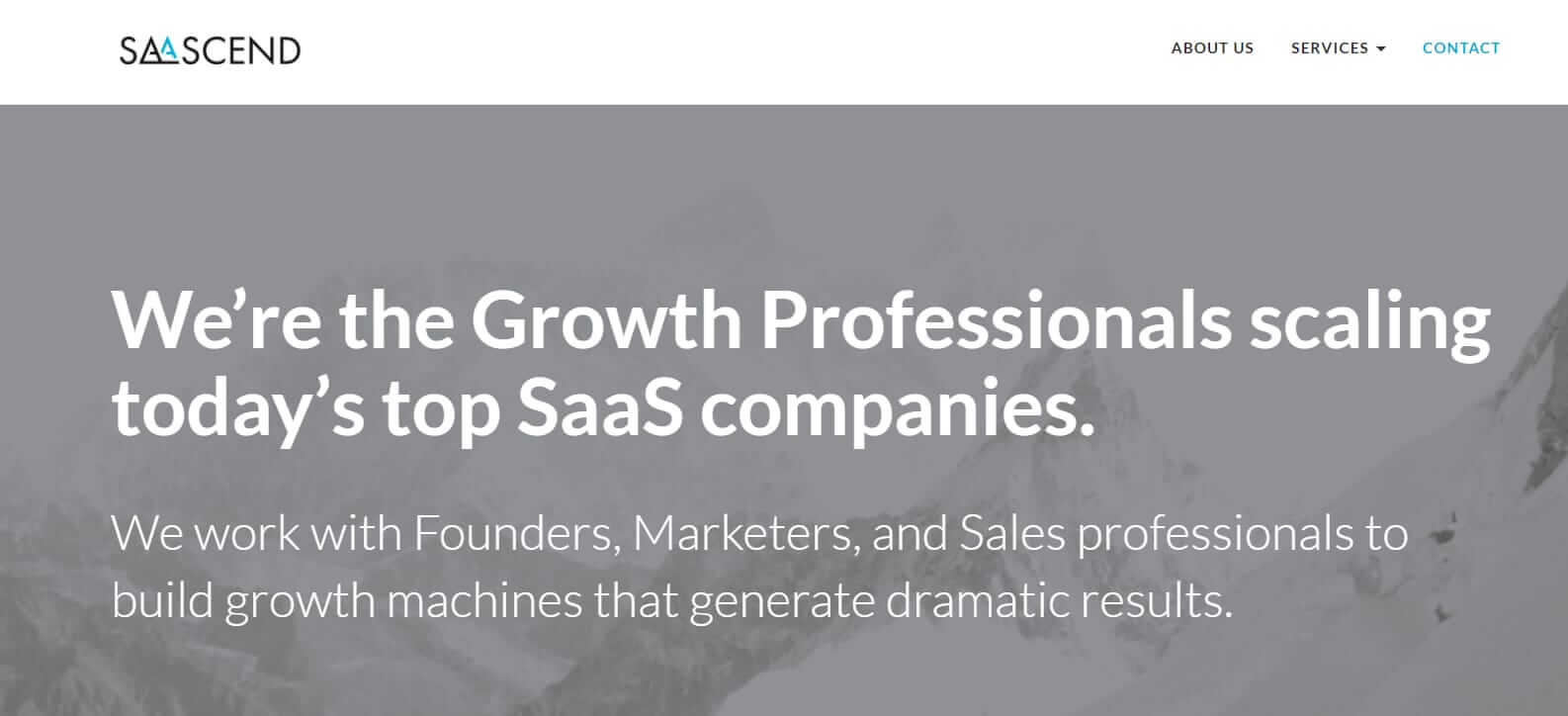 Salesforce-consulting-firms-shortlist-Saascend