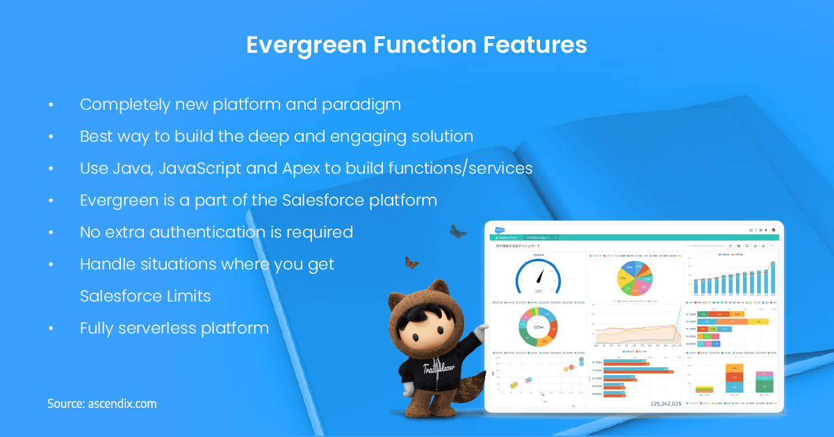 Salesforce Evergreen Functions Features