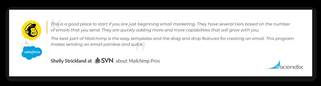 Mailchimp-for-Salesforce-App-Pros