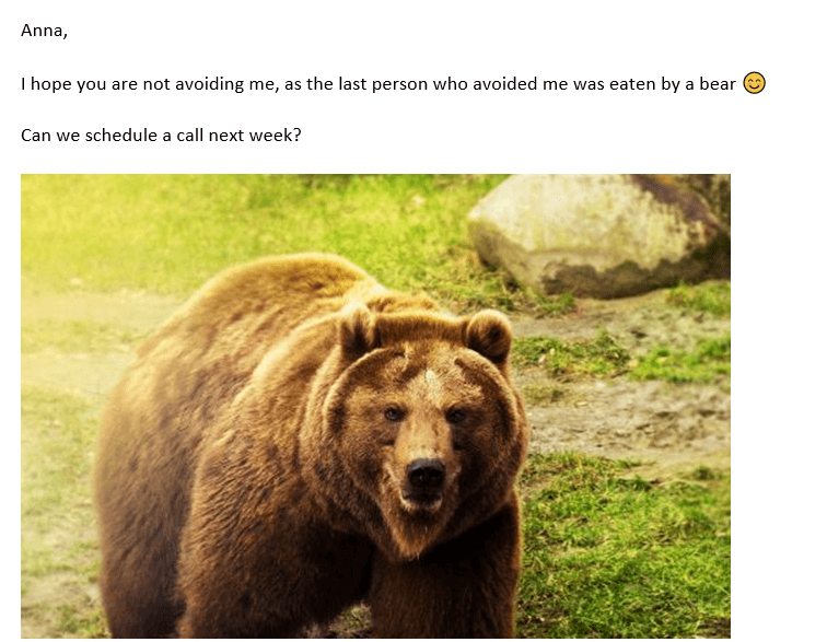 Email-bear