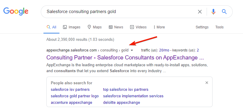 Example of a Salesforce Partner Search on Google
