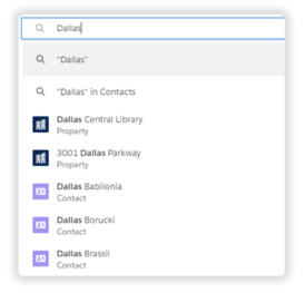 Salesforce Global Search interface