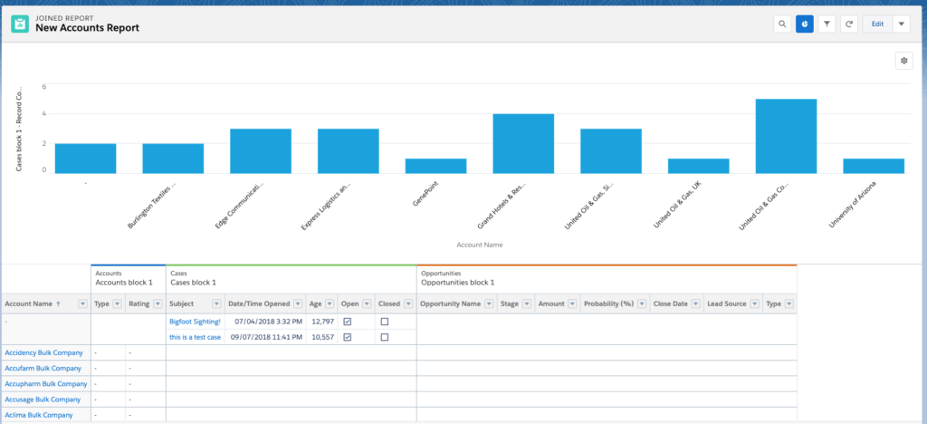 New-Accounts-Salesforce-Report